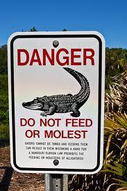 molest gator