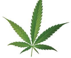 weed reefer