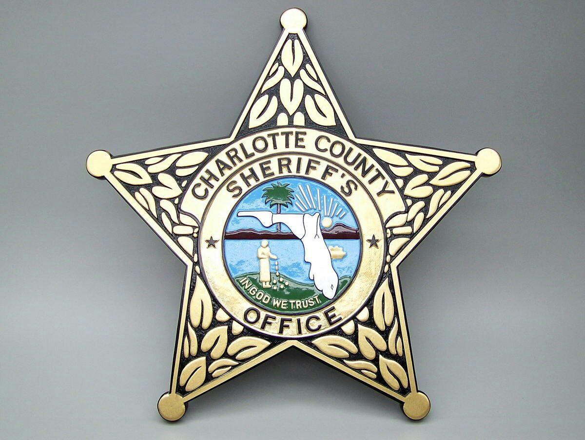 ccso-badge